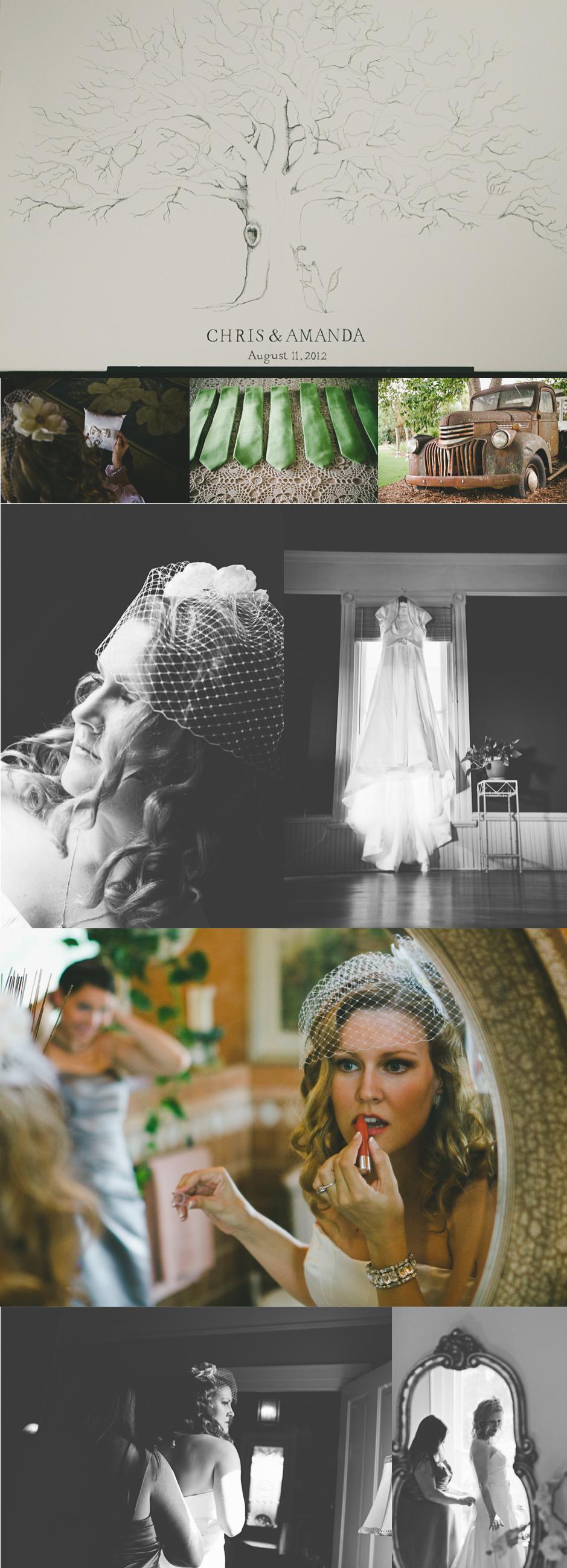FrecklesAndLocks20120811_AmandaChris_Wedding_Collage1-1